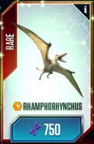 File:Rhamphorhynchus.jpg