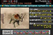 TriceratopsLhornParkBuilder