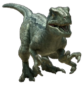 Jurassic world velociraptor v4 by sonichedgehog2-da9f2eg