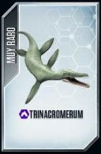 File:Trinacromerium.jpg
