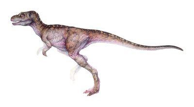 T-rex infant.jpg