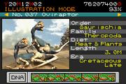 037 - oviraptor