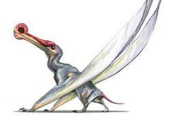 Ornithocherirus