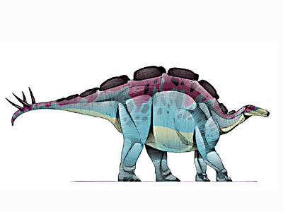 File:JIC Wuerhosaurus.jpg