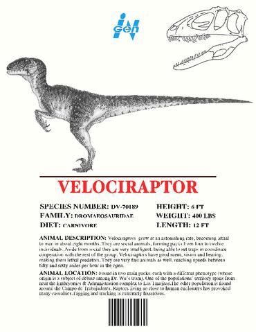 File:Ingen Dinosaur Info Sheets Velociraptor.png