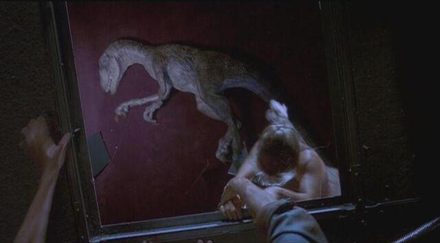 File:Velociraptor 6.JPG