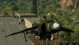 Si-47 Leopard at Sungai Cengkih Besar