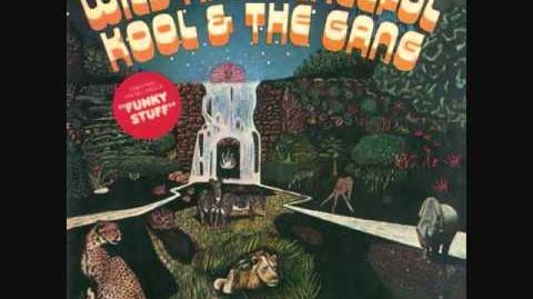 Kool The Gang Jungle Boogie Hollywood Swinging