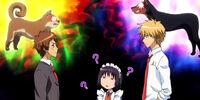 Hinata, Misaki, and Usui