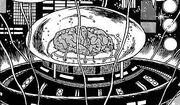 1 brain