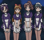 Nishsizawa maids. why are they here