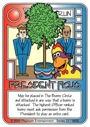 656 President Ficus-thumbnail