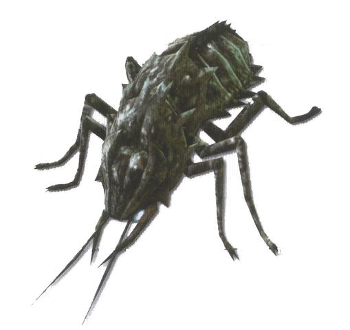 File:Cadaver Beetle.png