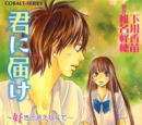 Kimi ni Todoke Light Novel Volume 04
