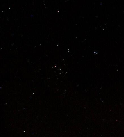 File:Taurus.jpg