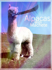 Alpacas with machete