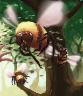 File:Bee.jpg