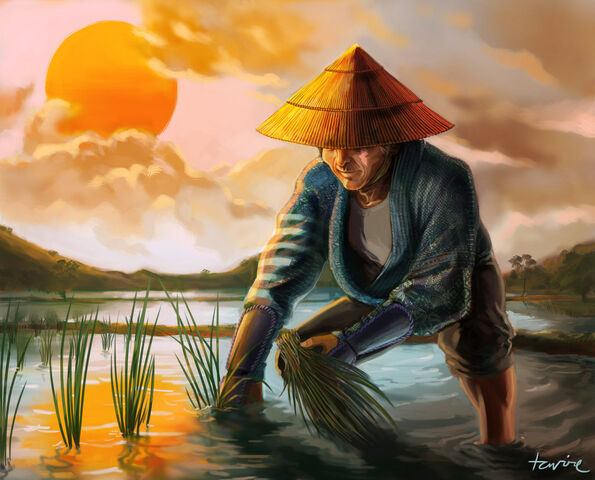File:Rice Farmer.jpg