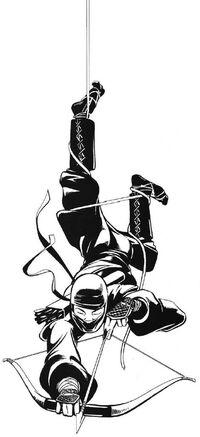 Untouchable Ninja