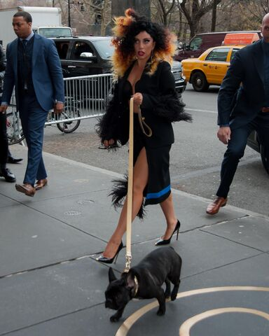 File:12-2-14 Arriving at her apartment in NYC 001.jpeg