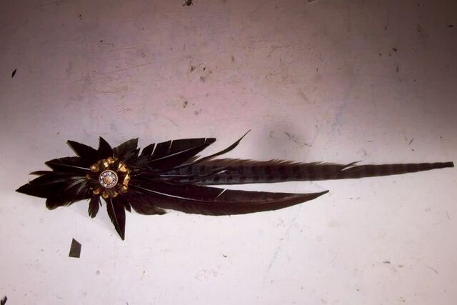 File:Keko Hainswheeler - Custom accessorie.jpg