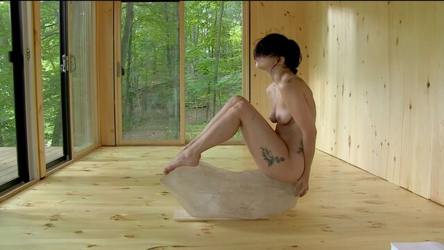 File:The Abramovic Method Practiced by Lady Gaga 008.JPG