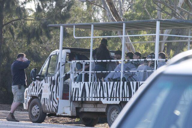 File:8-25-14 At Werribee Open Range Zoo in Victoria 001.jpg
