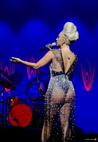 File:7-6-15 Cheek to Cheek Tour 001.jpg