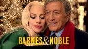 Barnes & Noble 2015 Campaign