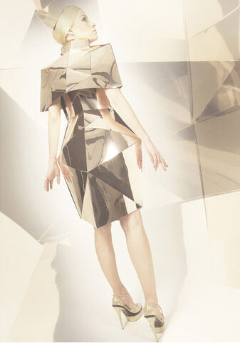 File:Daniela Karlinger Mirror Dress from Organic Shape 2009.jpg