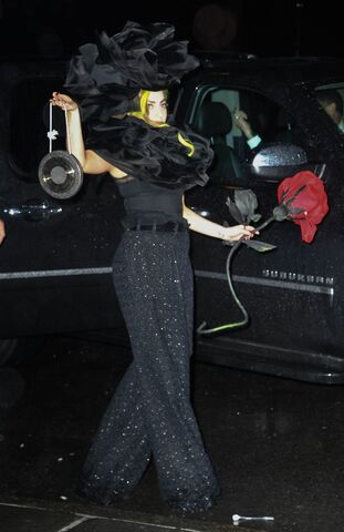 File:4-7-14 Arriving at her apartment in NYC 001.jpg