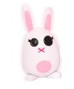 Misty's Rabbit