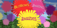 Blossom's Amazing Amazies