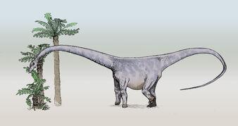 Barosaurus-sketch3