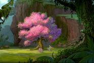 Treesweet Tree