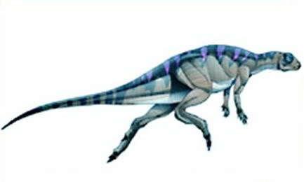File:Fabrosaurus4.jpg
