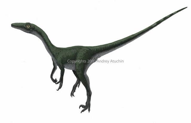 File:Saurornithoides.jpg