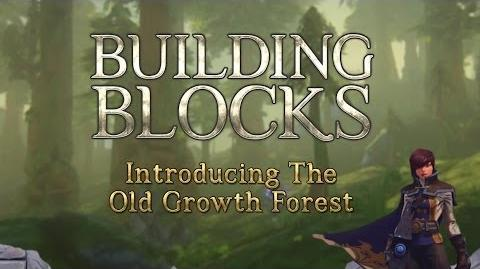 Building Blocks The Old Growth Forest-0