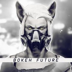 Bokeh Future