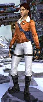 Relic Run Outfit Arctic Rescue
