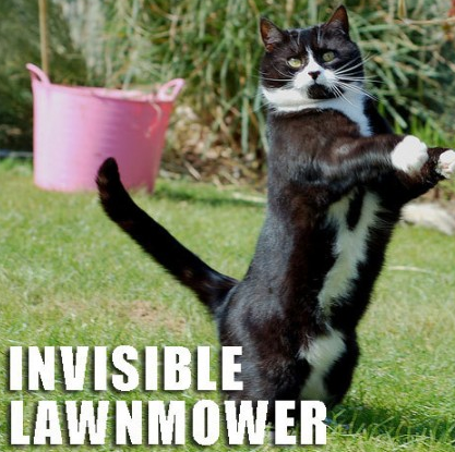 File:Invisible lawnmower.PNG