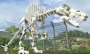Spinoskeleton