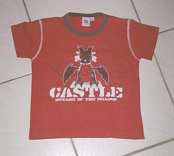 File:841220 beware of the dragon t shirt.jpg