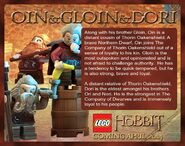 Oin and Gloin and Dori Description