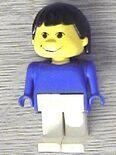 393 Basic figure