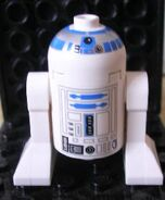 Fig R2D2 small