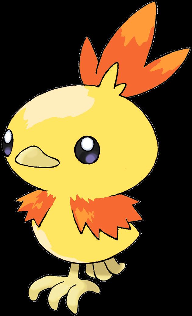 Pokemon Shiny Torchic Images | Pokemon Images