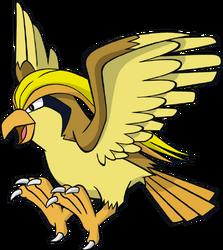 018 Pidgeot DW Shiny