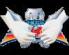 Gokaiger Gloves M IMVU