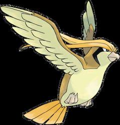018 Pidgeot Shiny